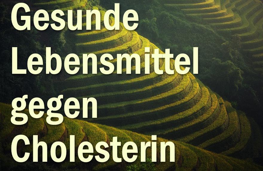 Hilfe gegen zu viel Cholesterin mit natürlichen Lebensmitteln vorbeugen